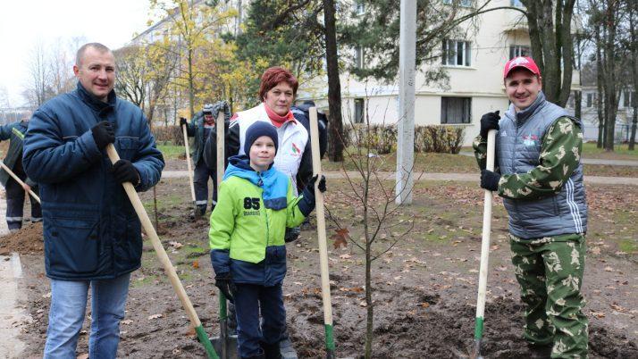 Сегодня на ул. Центральная г. Минска высадили 60 деревьев